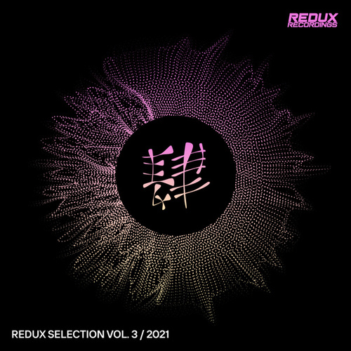 Redux Selection Vol. 3: 2021 by Various Artists