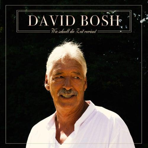 Wie schnell die Zeit verrinnt de David Bosh