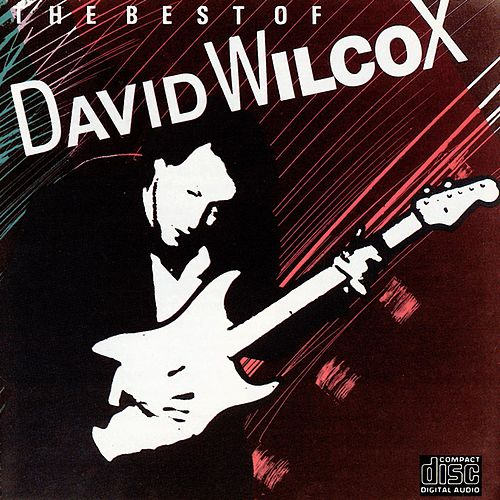 The Best Of David Wilcox de David Wilcox