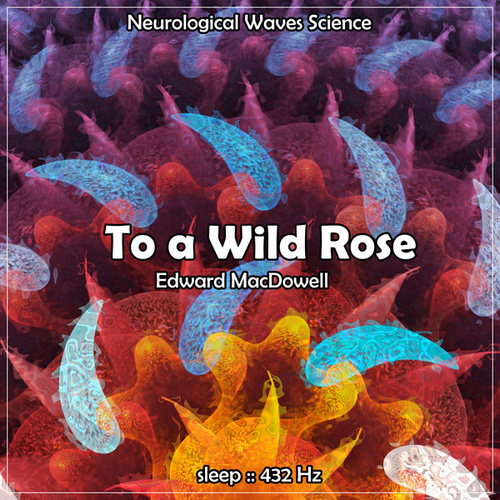 Sleep: To a Wild Rose, 432Hz by Neurological Waves Science