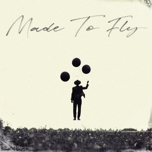 Made to Fly de Colton Dixon