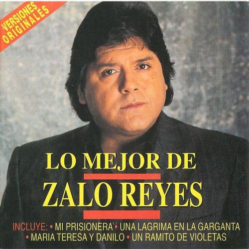 Un Ramito De Violetas de Zalo Reyes