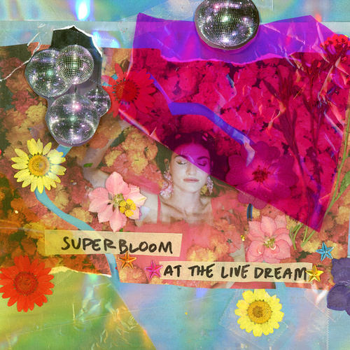 Superbloom at the Live Dream by MisterWives