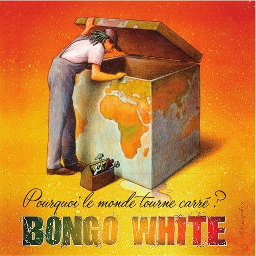Pourquoi le monde tourne carré ? by Bongo White