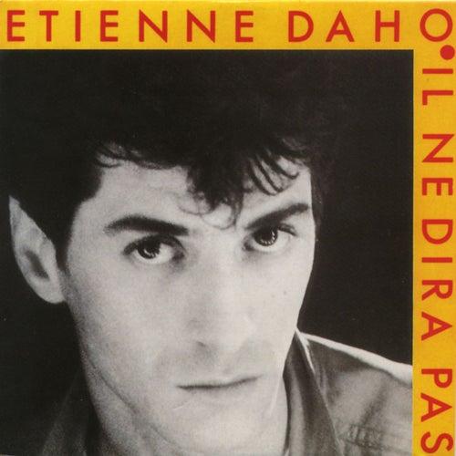 Il Ne Dira Pas de Etienne Daho