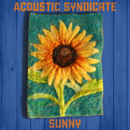 Sunny by Acoustic Syndicate