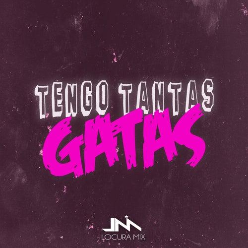 Tengo Tantas Gatas (Remix) de Locura Mix