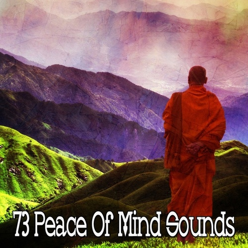 73 Peace of Mind Sounds von Entspannungsmusik
