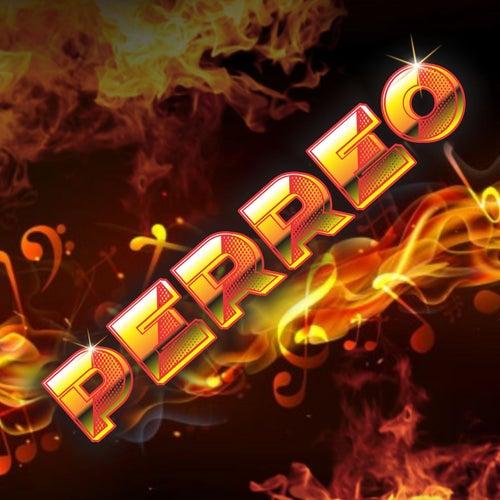 Perreo (Remix) de Dj Cumbio