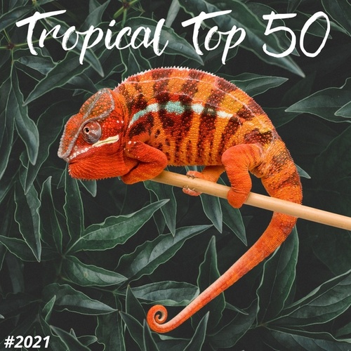 TROPICAL TOP 50 #2021 by Francesco Digilio