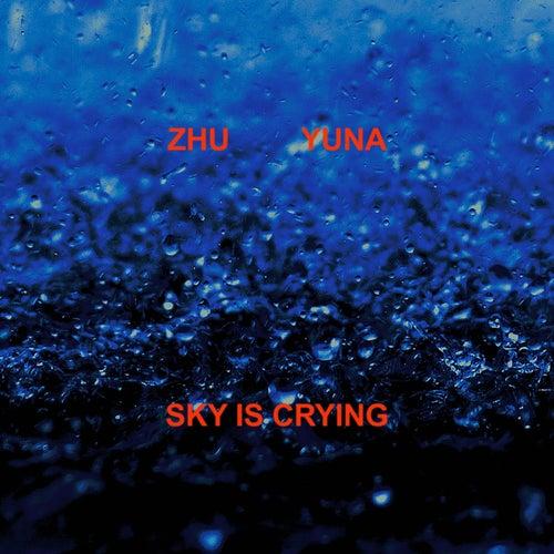 Sky Is Crying von ZHU