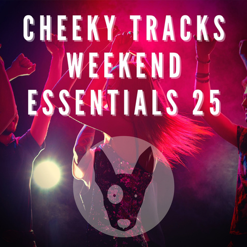 Cheeky Tracks Weekend Essentials 25 von Various Artists