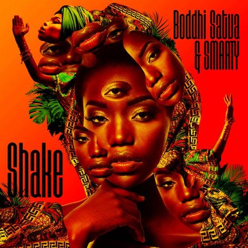 Shake by Boddhi Satva