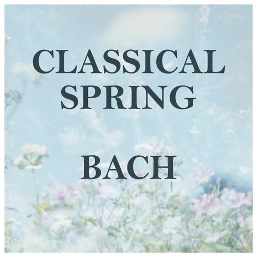 Classical Spring: Bach by Johann Sebastian Bach