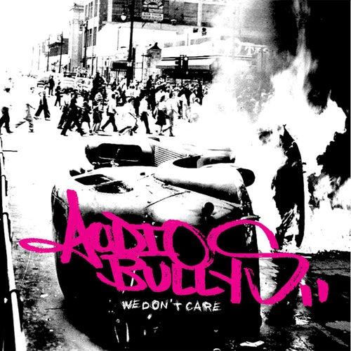 We Don't Care de Audio Bullys