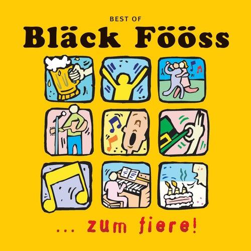 Best Of...Zum Fiere von Bläck Fööss