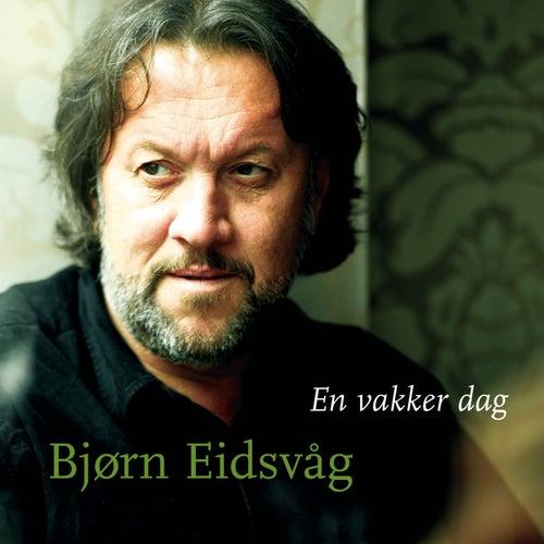En Vakker Dag by Bjørn Eidsvåg