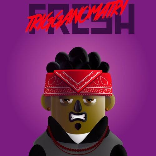 FRESH by Trigganomatry