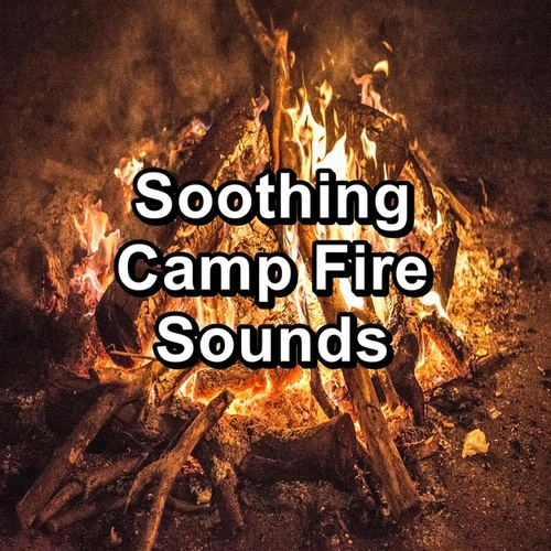 Soothing Camp Fire Sounds by Ocean Sounds (1)