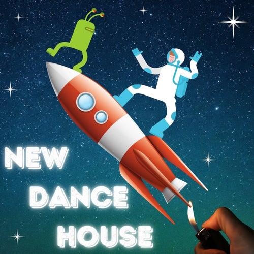New Dance House by Banana Bar