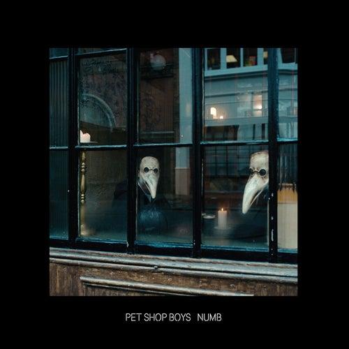 Numb by Pet Shop Boys