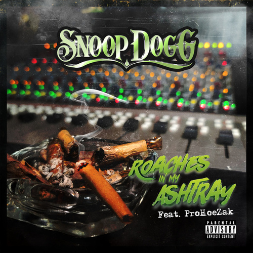 Roaches In My Ashtray (feat. ProHoeZak) by Snoop Dogg
