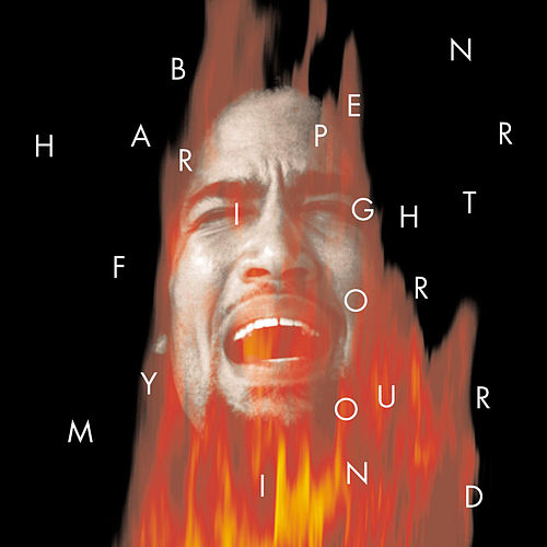 Fight For Your Mind de Ben Harper