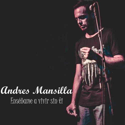 Enséñame a vivir sin ti de Andrés Mansilla
