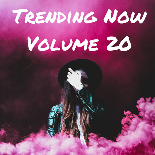 Trending Now Volume 20 de Various Artists