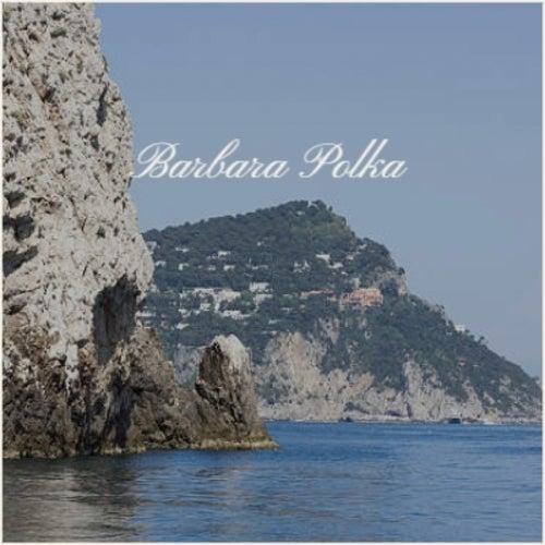Barbara Polka by Various Artists
