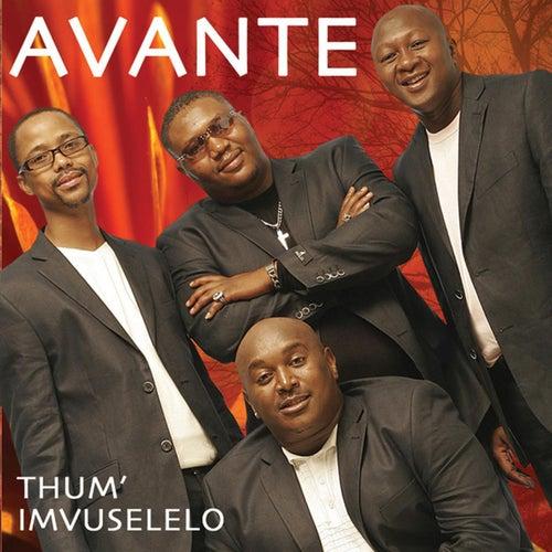 Them' Imvuselelo by Avante