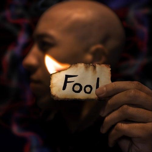 Fool by Jason Bembry