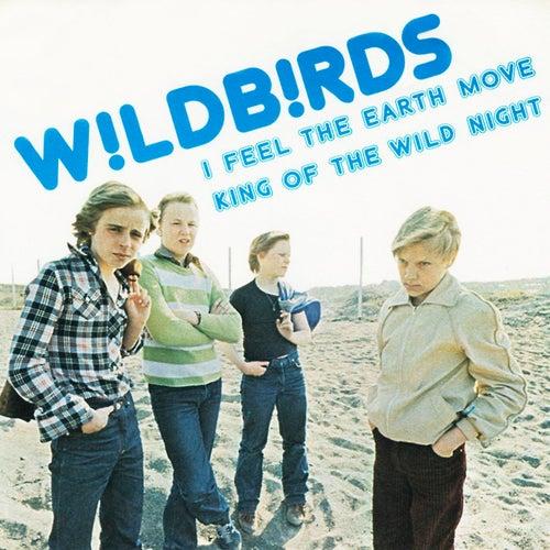 King Of Wild Night de The Wildbirds