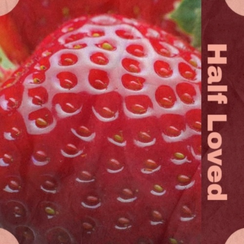 Half Loved by Various Artists
