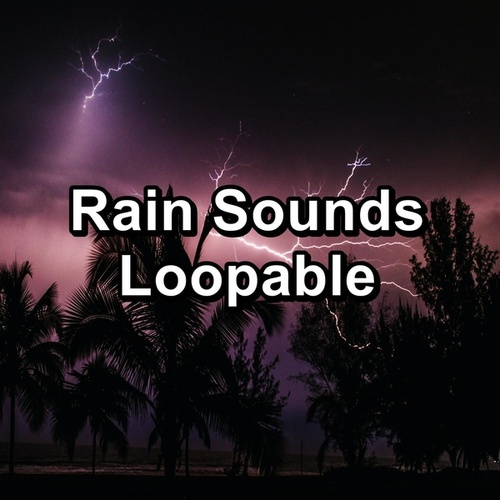 Rain Sounds Loopable by Rain Radiance