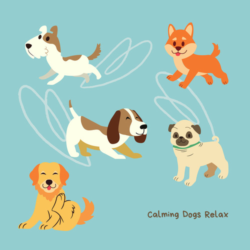 Calming Dogs Relax by Pet Music Therapy