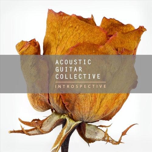 Introspective de Acoustic Guitar Collective