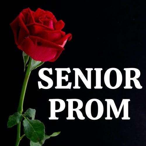 Senior Prom 2021 de Various Artists