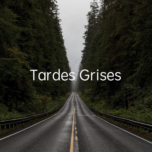 Tardes Grises de Various Artists