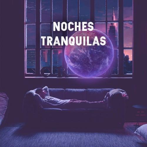 Noches Tranquilas de Various Artists