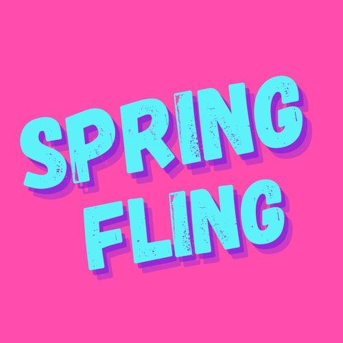 Spring Fling de Various Artists