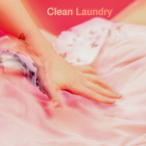 Clean Laundry by Transviolet