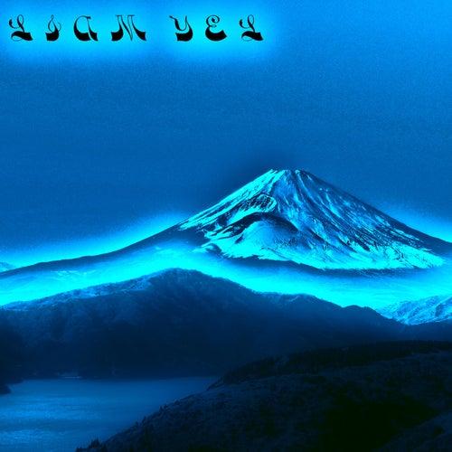 Fuji-san von Liam Yel