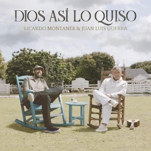 Dios Así Lo Quiso de Ricardo Montaner
