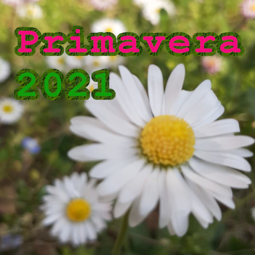 Primavera 2021 de Various Artists