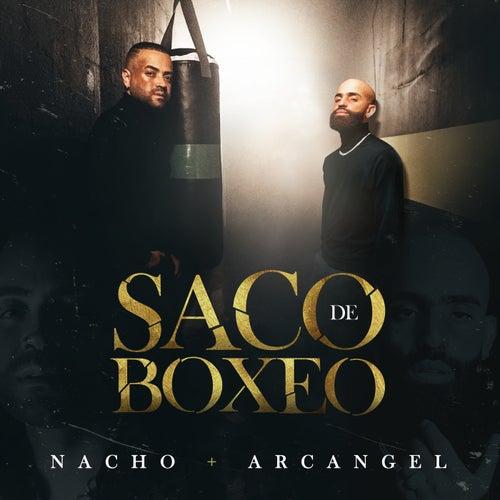 Saco De Boxeo de Nacho