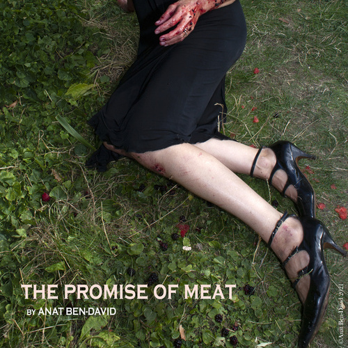 The Promise Of Meat by Anat Ben David