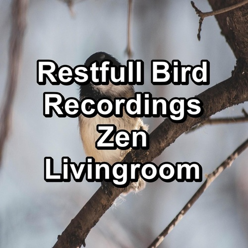 Restfull Bird Recordings Zen Livingroom by Spa Relax Music