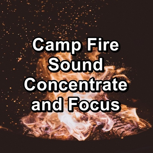 Camp Fire Sound Concentrate and Focus by Spa Music (1)