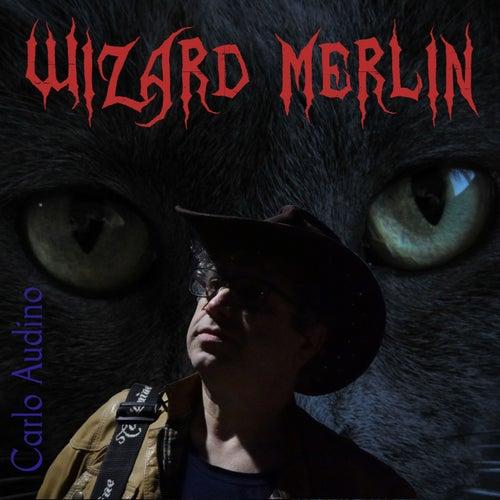 Wizard Merlin di Carlo Audino